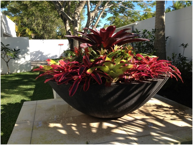 Potanico Architectural Pots Planters And Gardenware
